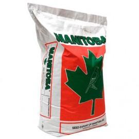 Mixtura Manitoba T3 sin perilla