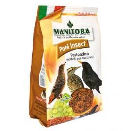 Pasta Insect Morbida Manitoba