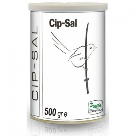 CIP SAL