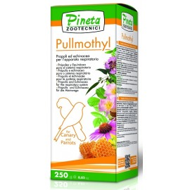 Pullmothy
