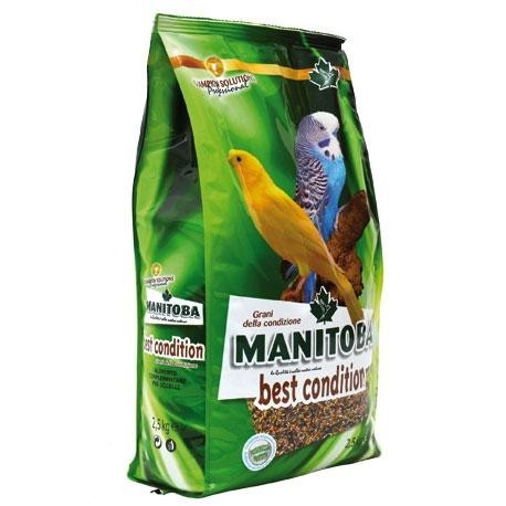 Mxt. Salud Best Cond. Manitoba