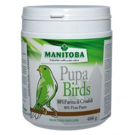 Harina de Larvas Pupa Birds