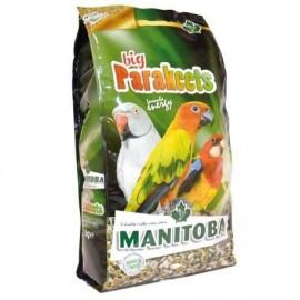 Mixtura Psitaceos Grandes Big Parakeets