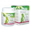 Vitaminico Muda Winner Mute